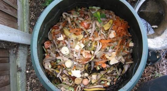 compostage-Fruits-legumes